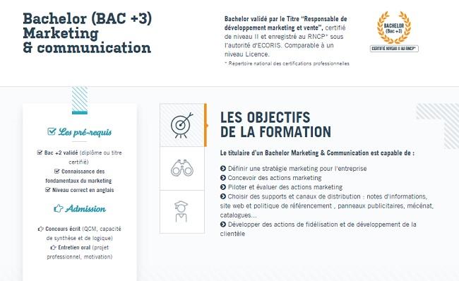 Licence marketing Rennes